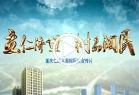 <b>重庆仁品耳鼻喉医院宣传片</b>